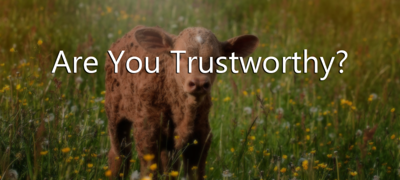 What's the return on your investment of being Trustworthy? Can you be trusted?